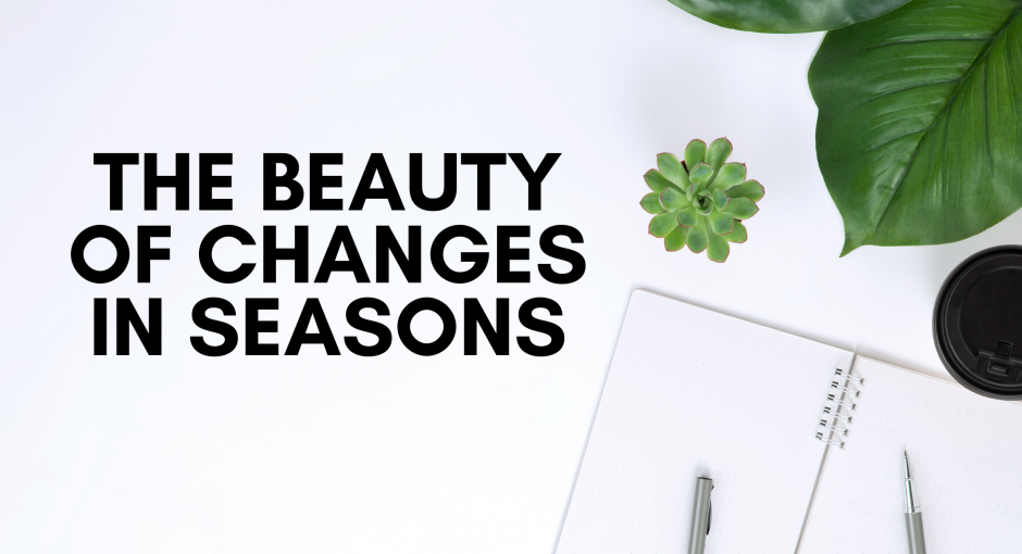 The beauty of changes in seasons